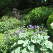ioldanda-garden-in-spring